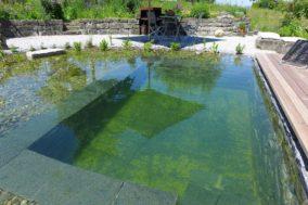 Teich mit Badebecken